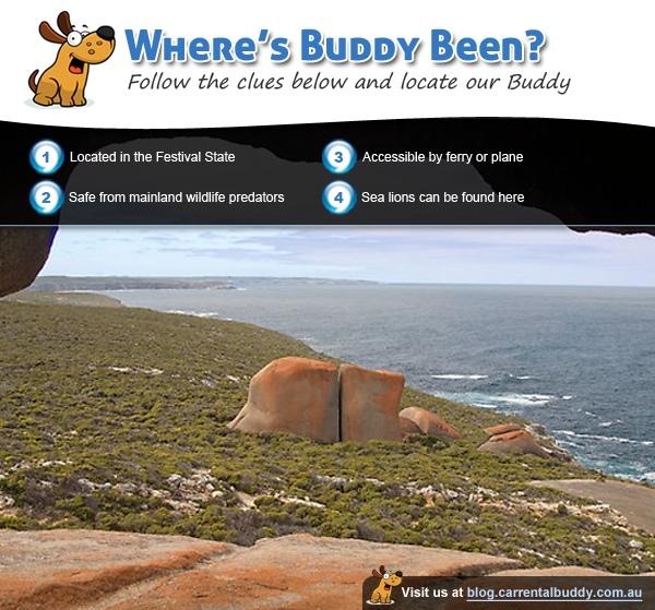 Where's Buddy Been - January 2012