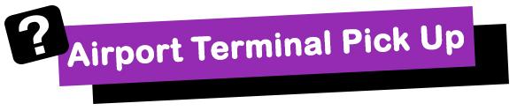 Airport Terminal Pickup