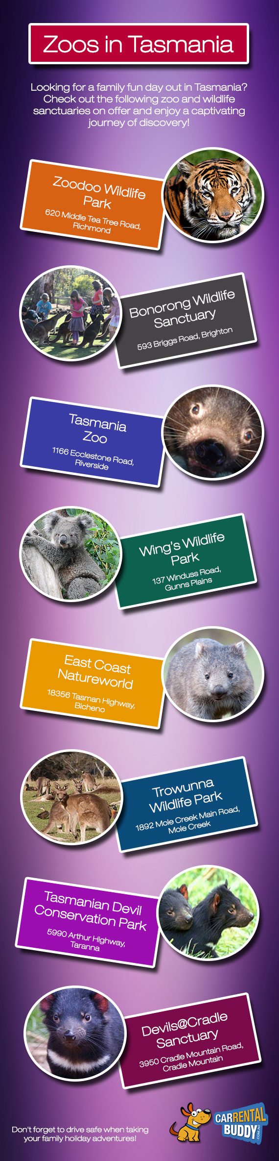 Check Out These Top Zoo Attractions in Tasmania
